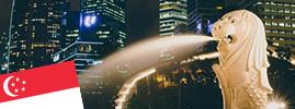 新加坡職場直擊